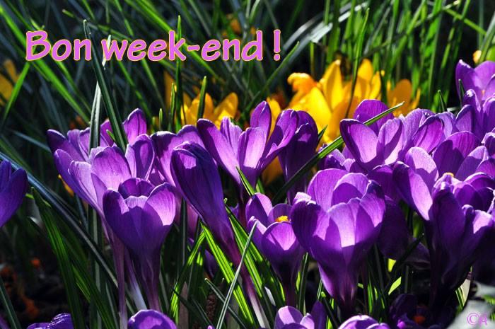 Bon Week End Images Photos Et Illustrations Pour Facebook