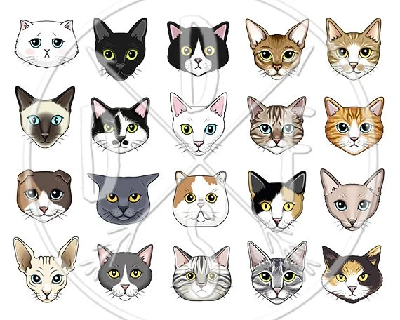 A0124 Cat Faces Clipart Black White Tabby Siamese