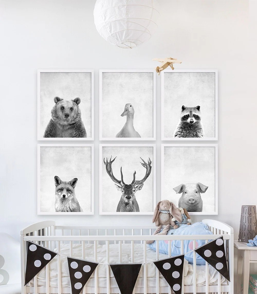 Six Animal Prints Boys Nursery Room Ideas Woodland Animals