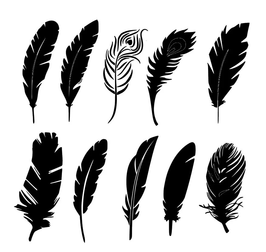 Silhouette Feathers