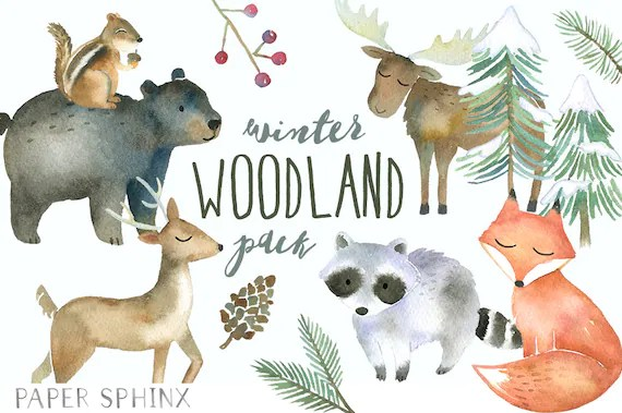 Winter Woodland Animals Clipart Watercolor Forest Animals