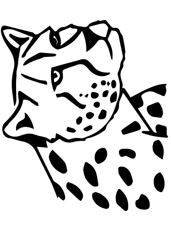 Leopard Snow Coloring Pages Print