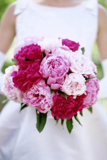 WATCH  12 Surprising Facts All Peony Enthusiasts Should Know     Peony Facts Wedding Bouquets