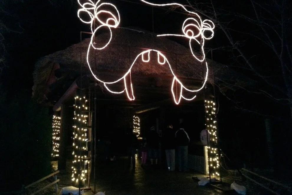 Zoo Lights Hogle Zoo