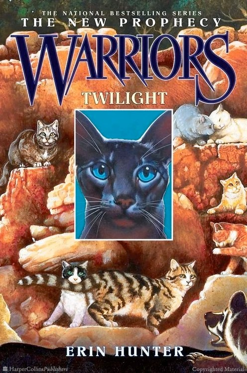 Warriors Book Dawn Clans