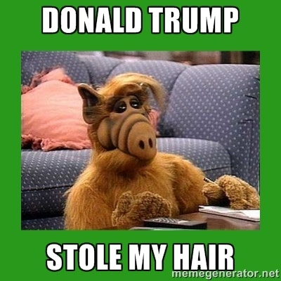 Image of: Trump Winning Here Are Some Memes That Prove How Ridiculous Donald Trumps Hair Is Bustle 16 Donald Trump Hair Memes So Funny Youll Actually Be Grateful Hes