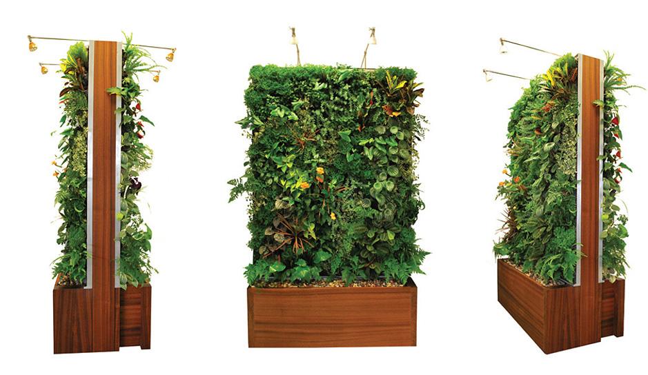 Green Homes Ideas