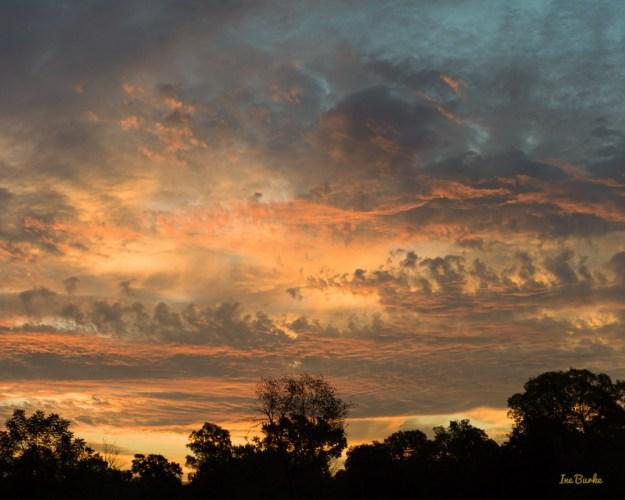 Majestic Texas Sky Inegaleri