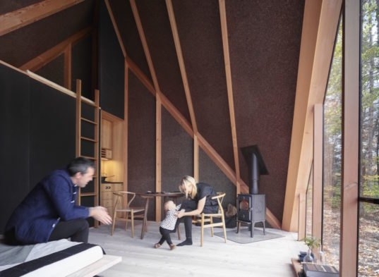 Tiny House Interior Designs