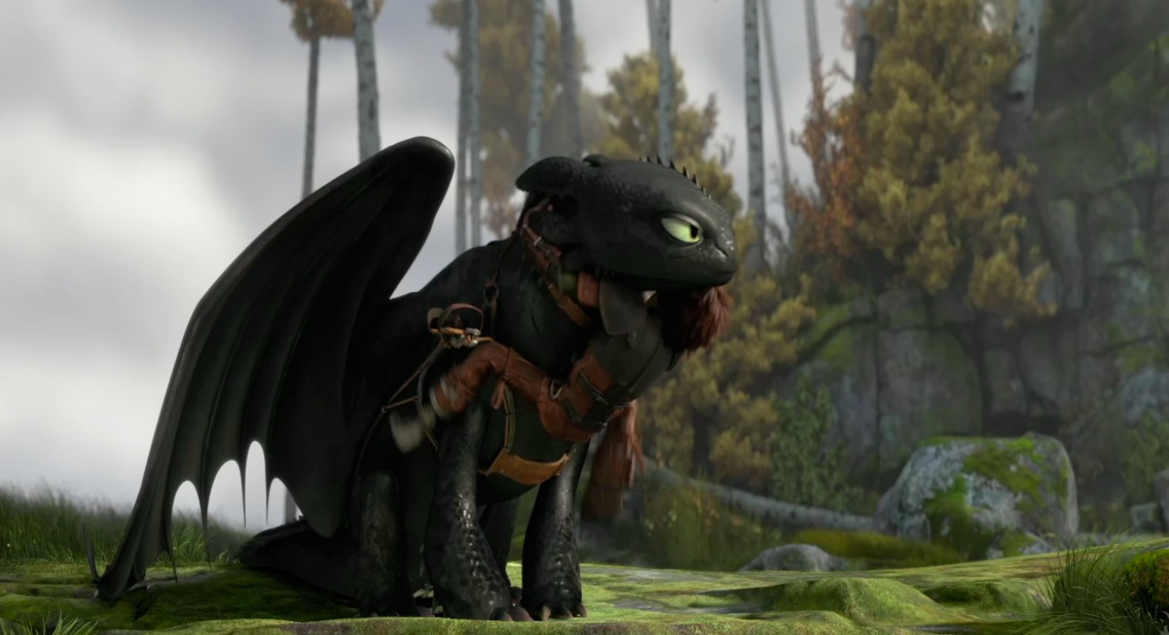 How To Train Your Dragon 2   Beautiful Minds
