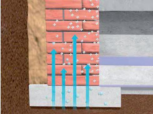 Feuchte Wände – Sanierung vom Profi gegen aufsteigende Feuchtigkeit