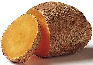 Electrifying success in raising antioxidant levels in sweet potatoes