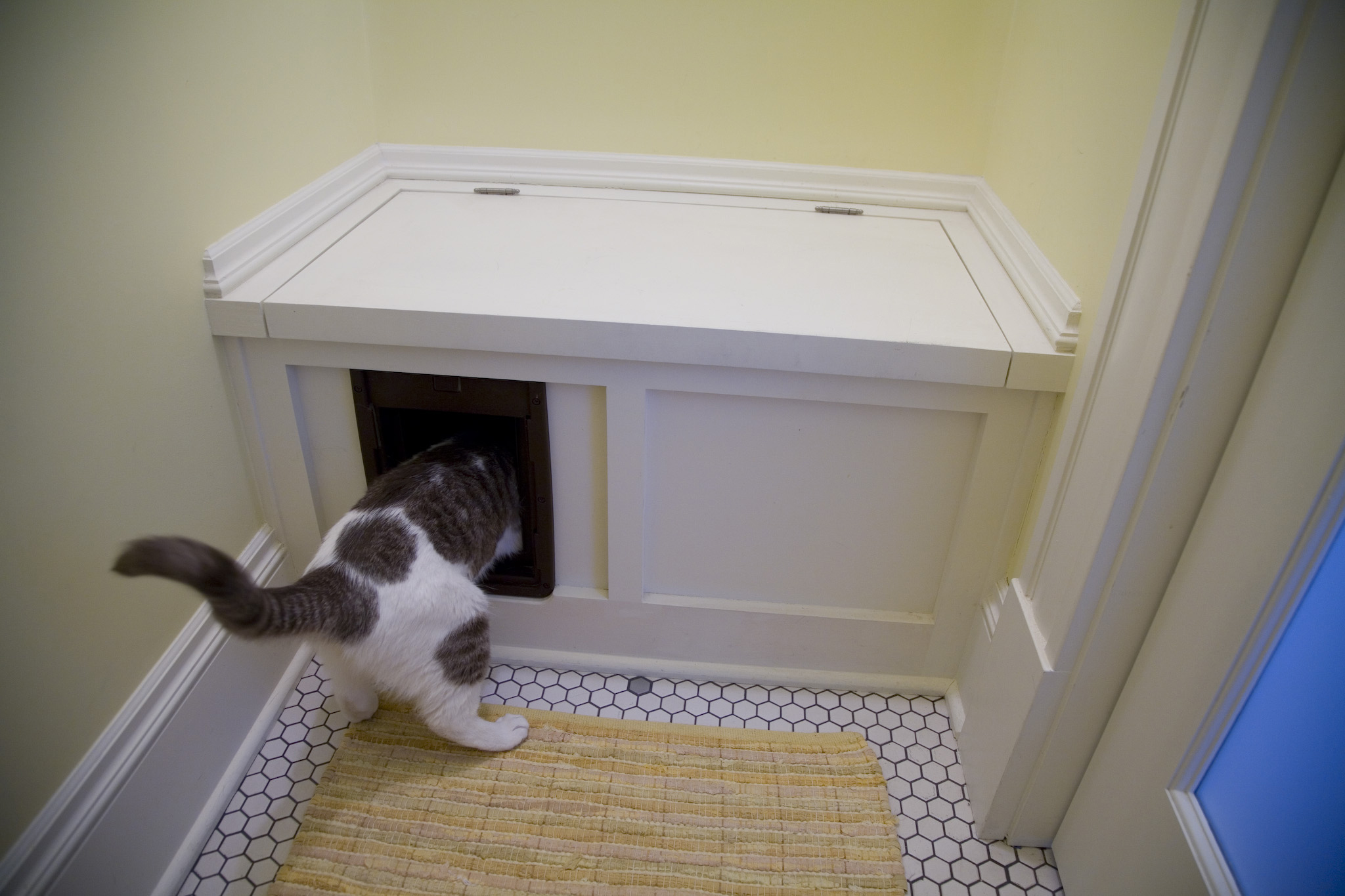 5 Clever Conveniences For A Small Bathroom Inside Arciform