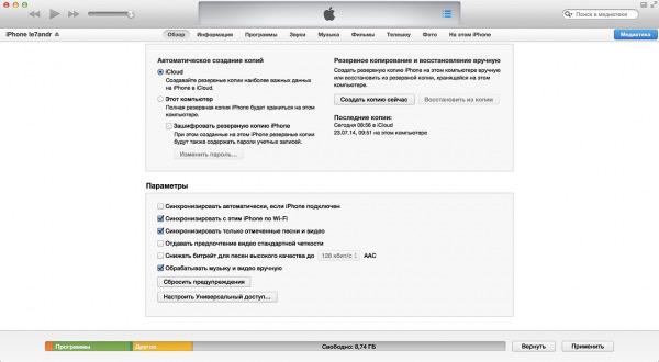 Manipulați muzică și video manual în setările iTunes