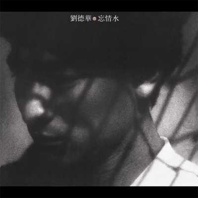 刘德华 - 忘情水