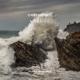 Download lagu OneRepublic - Wild Life MP3