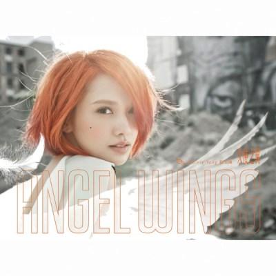 杨丞琳 - 天使之翼