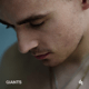Download lagu Dermot Kennedy - Giants MP3