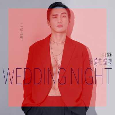 王振諾 - 洞房花燭夜 - Single