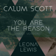 Download lagu Calum Scott & Leona Lewis - You Are the Reason (Duet Version)