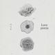 Download lagu IU - Love Poem