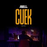 Download Rizky Febian - Cuek