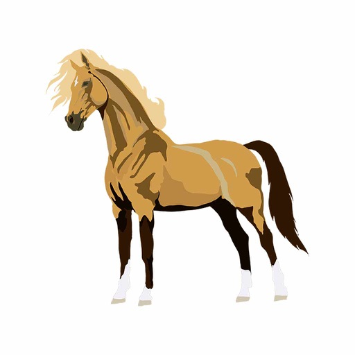 realistic horse breeds # 24