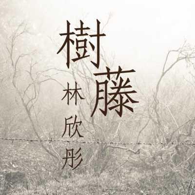 林欣彤 - 树藤 - Single