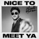 Download lagu Niall Horan - Nice to Meet Ya