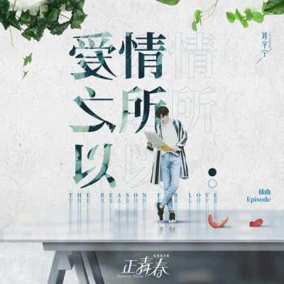 劉宇寧 - 愛情之所以 (電視劇《正青春》插曲) - Single