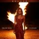 Download Céline Dion - Courage MP3