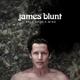 Download lagu James Blunt - Monsters