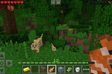 Minecraft Spielen Deutsch Minecraft Spielen Ohne Internet Bild - Minecraft spielen ohne internet