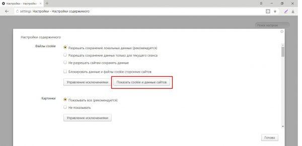 如何在Yandex浏览器中显示cookie
