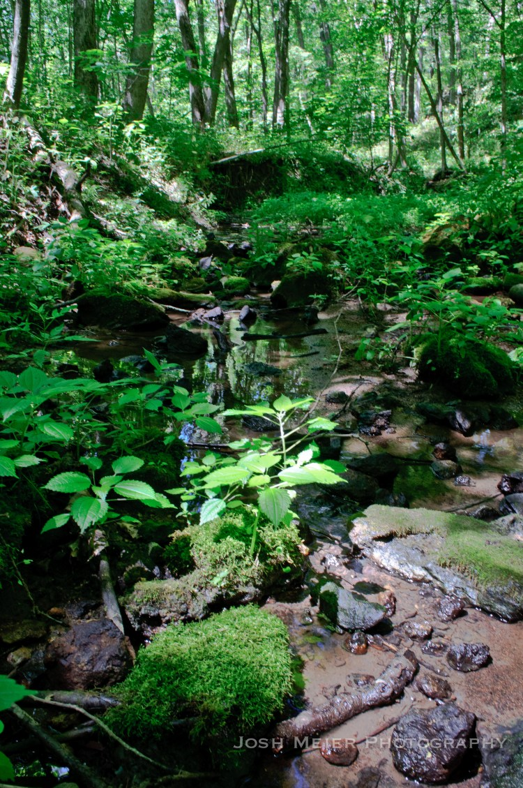 Maquoketa Caves Another Song Another Mile