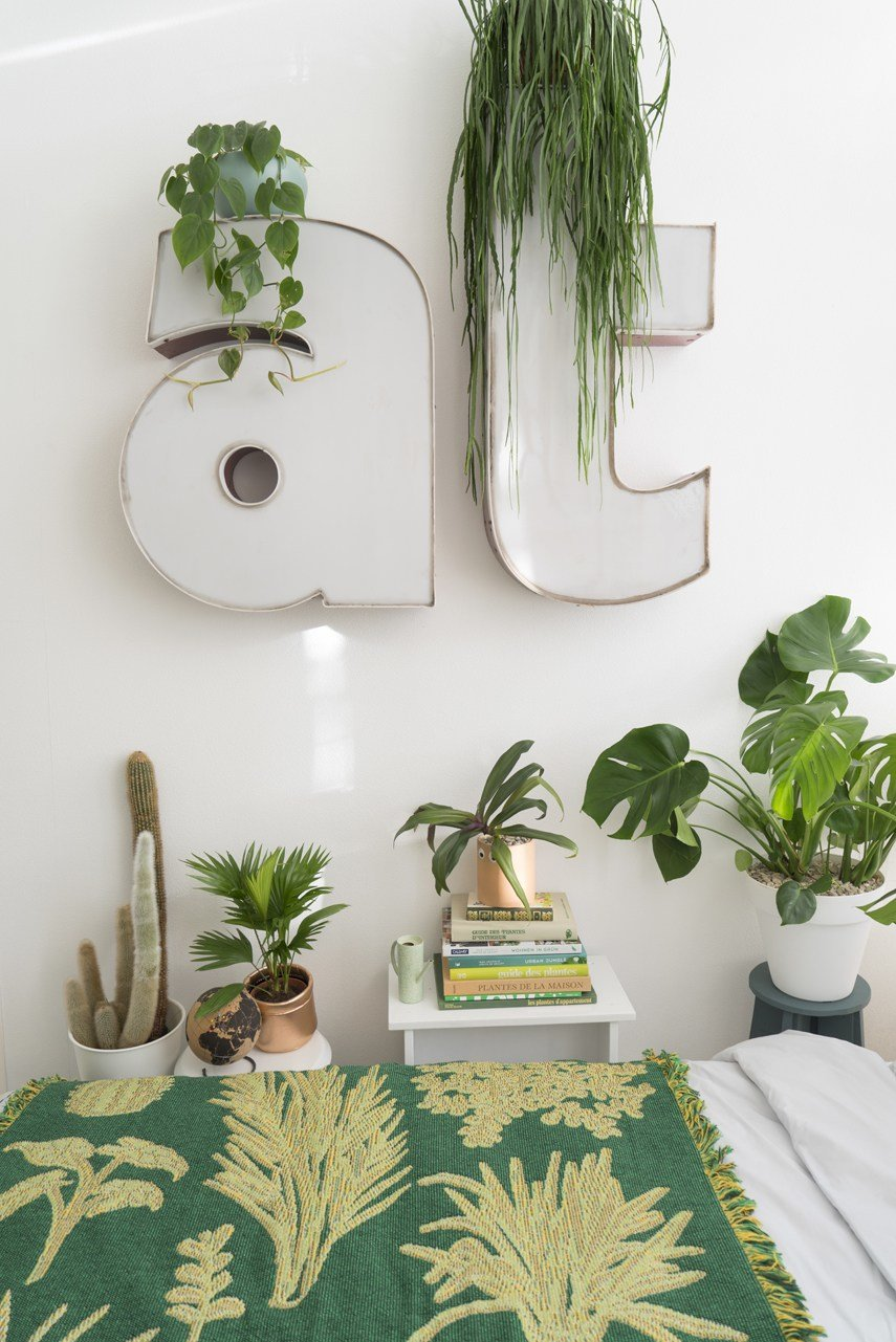 Best Sleeping With Plants With Pictures