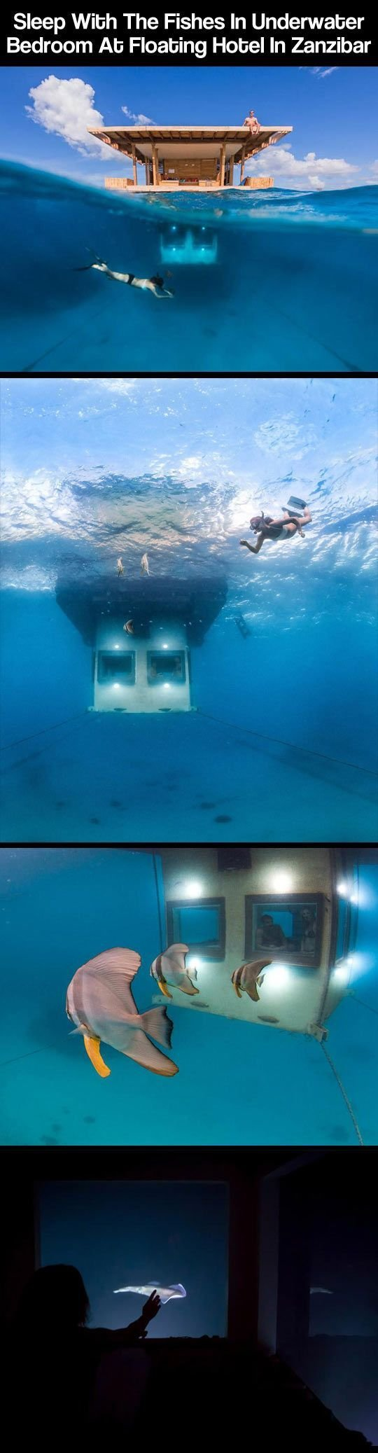 Best The 25 Best Underwater Hotel Ideas On Pinterest Fiji With Pictures