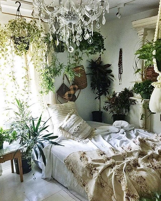 Best Neutral Hues And Plants Home Pinterest Las Plantas With Pictures