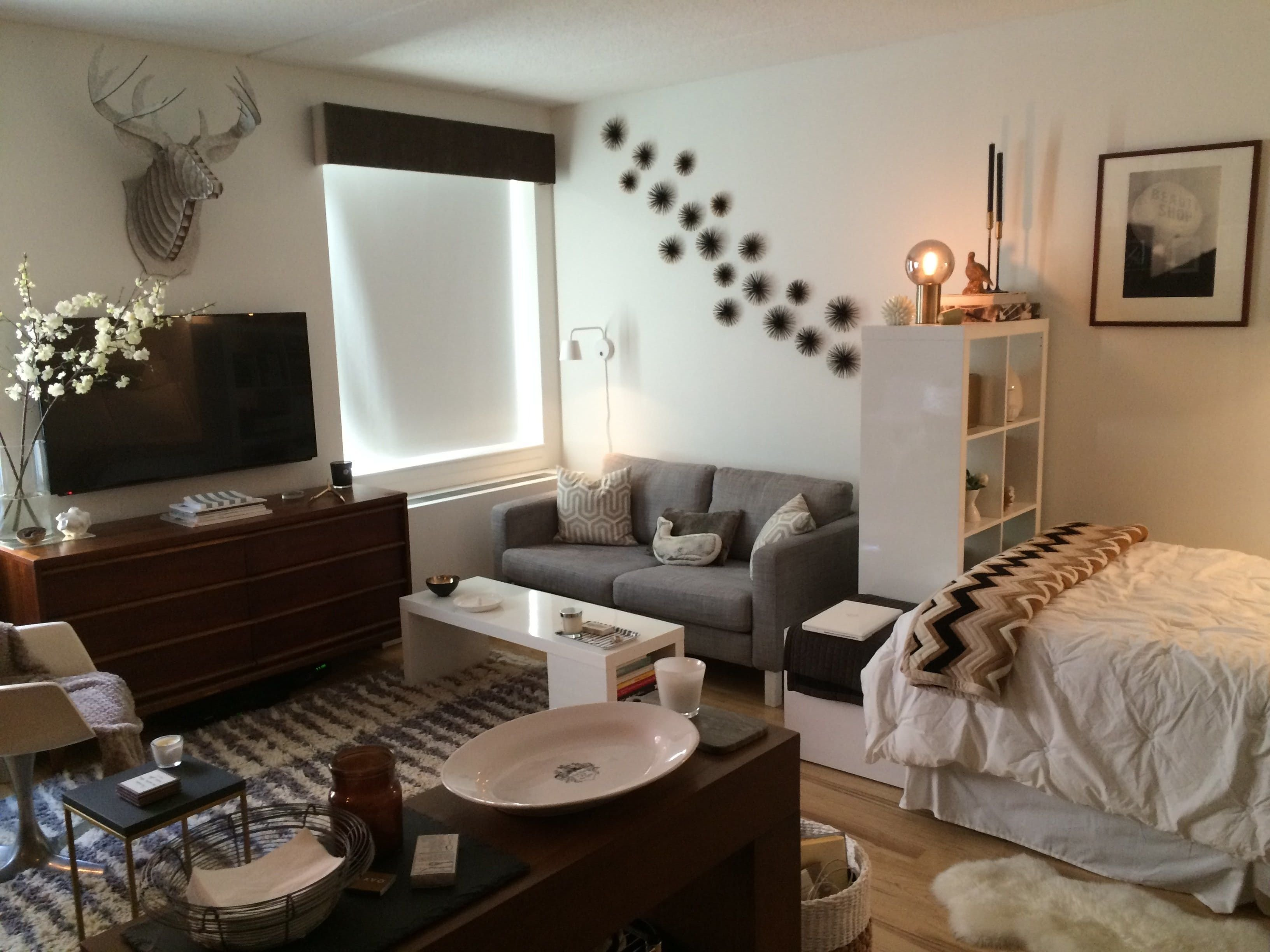 Best 5 Studio Apartment Layouts That Just Plain Work Studio With Pictures