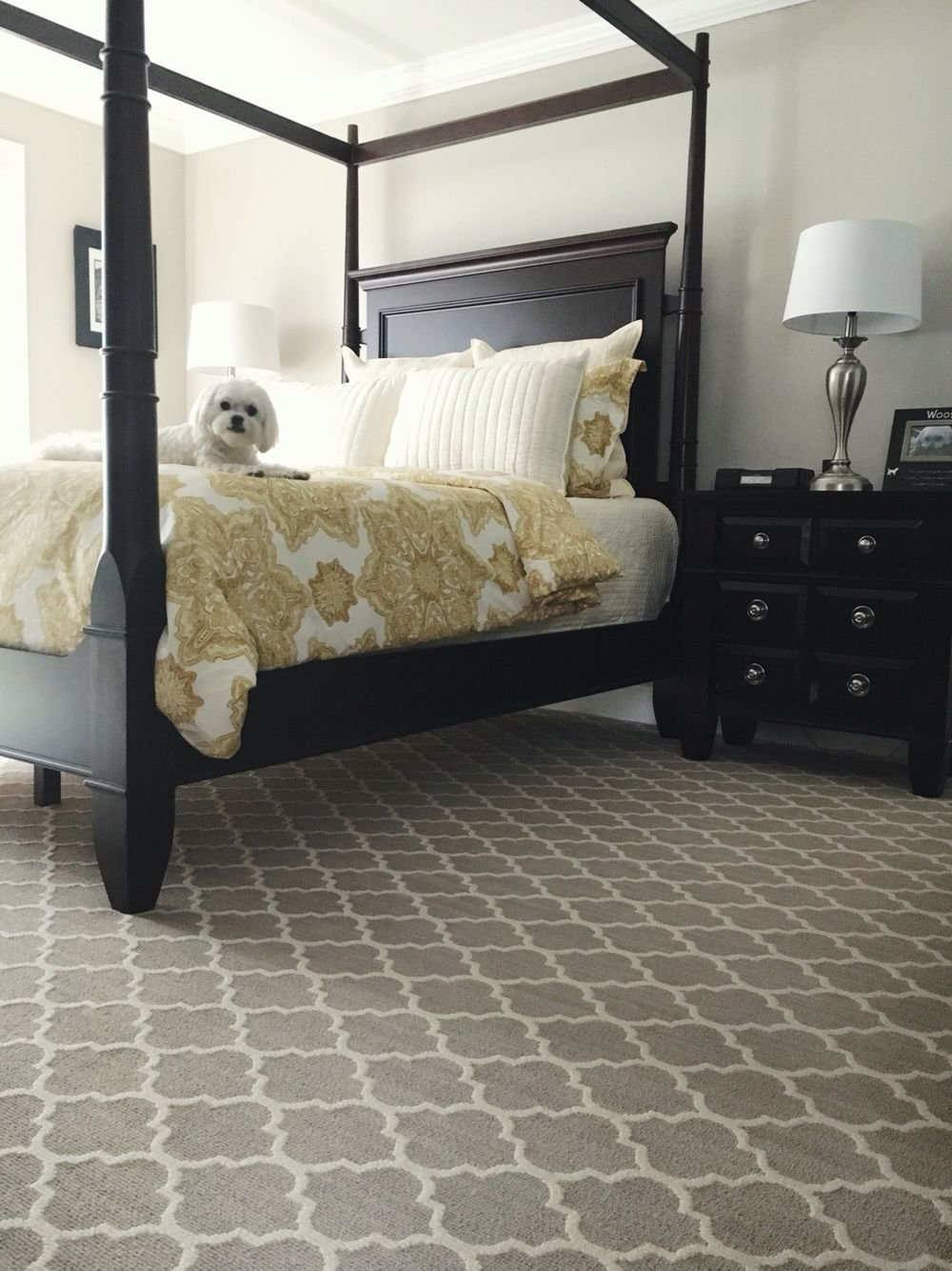 Best Master Bedroom Featuring Tuftex Carpet By Shaw Floors With Pictures