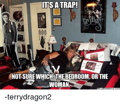 Best 25 Best Memes About It S A Trap Star Wars Trap And With Pictures