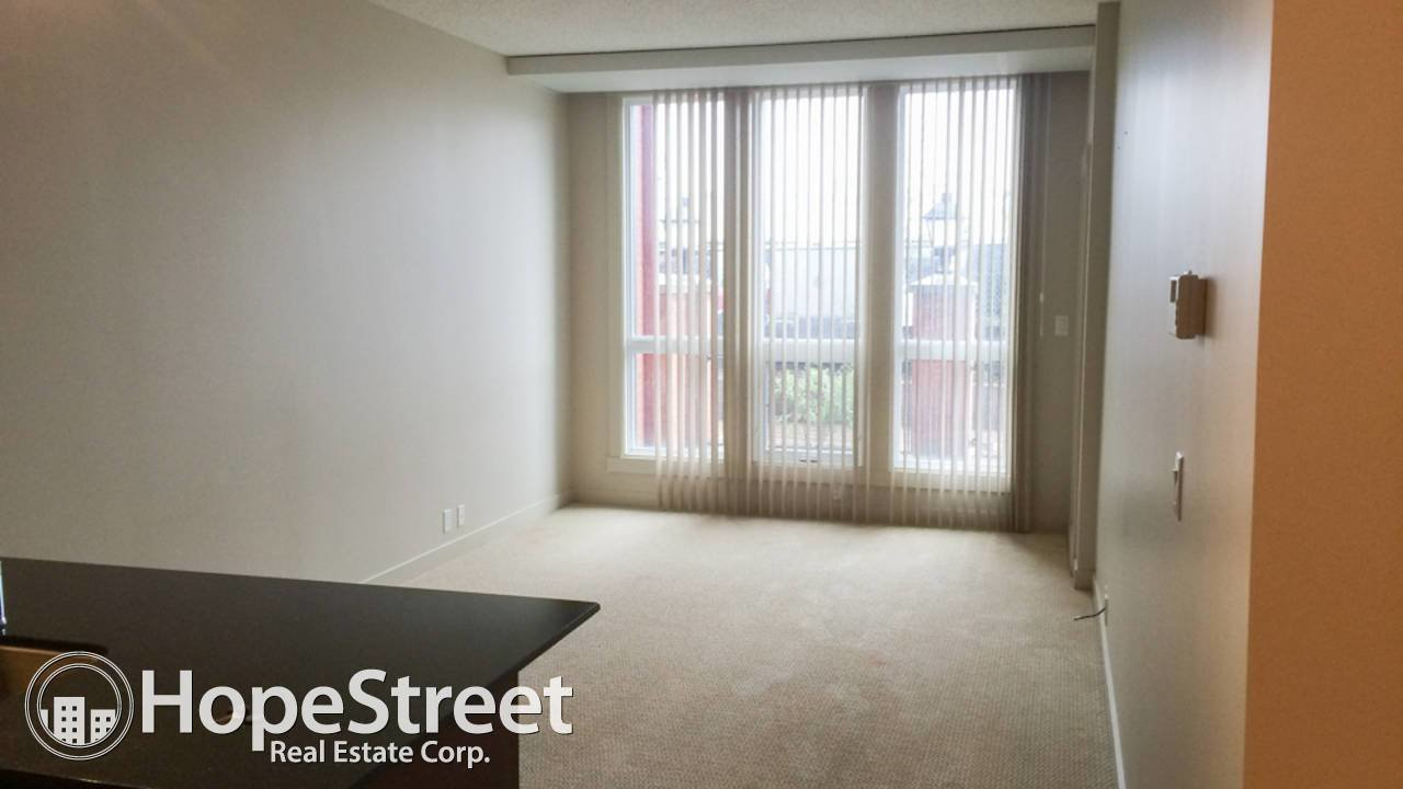 Best 1 Bedroom Apartment For Rent In Legacy Utilities Included With Pictures