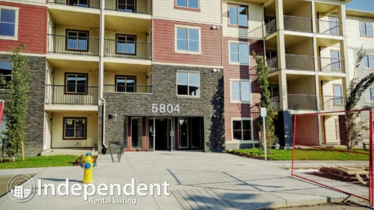 Best 3 Bedroom Apartment For Rent In Mactggart Area Edmonton With Pictures