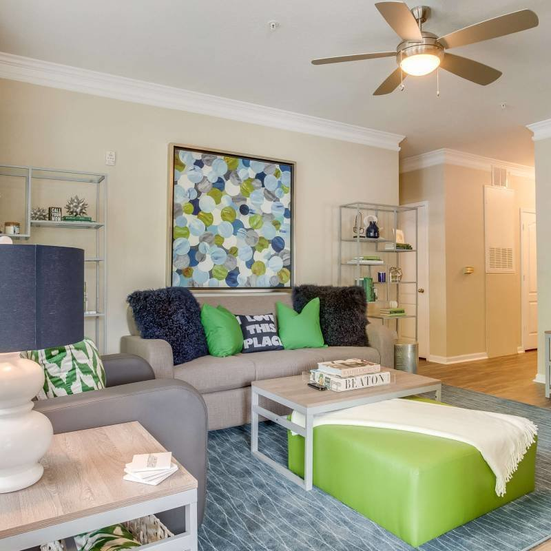 Best Society 865 Modern 2 3 Bedroom Apartments Near Ut With Pictures