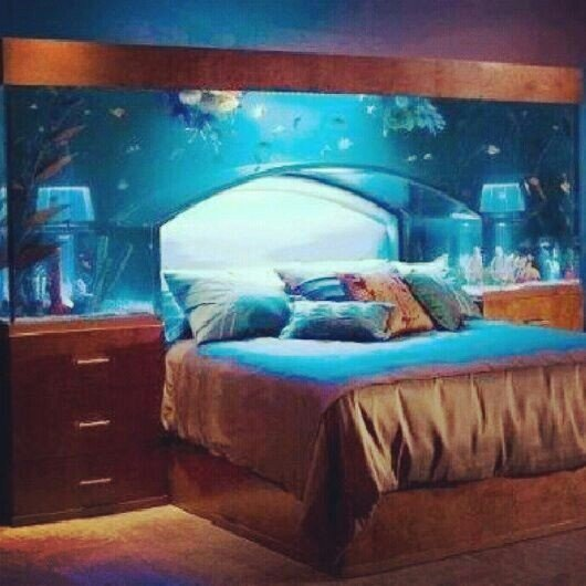 Best Headboard 46 Inspiring Fish Tanks For The Aquatic Lover With Pictures