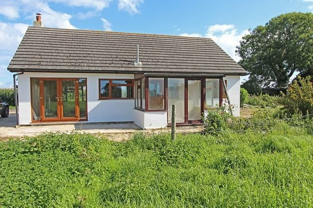 Best 2 Bedroom Detached Bungalow For Sale 44691492 With Pictures