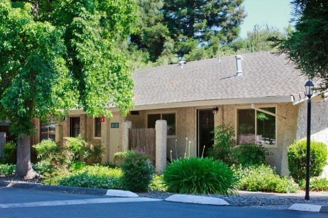 Best Joshua Tree Rentals Chico Ca Apartments Com With Pictures