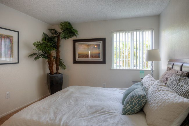Best Coconut Palms Apartments Orlando Fl Apartments Com With Pictures