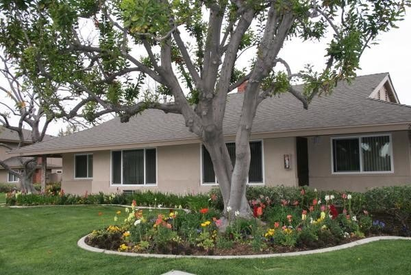 Best Montclaire Apartments Apartments Fullerton Ca With Pictures