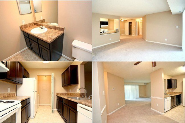 Best Apartments For Rent With 3 Beds 2 Bath In Newport News Va With Pictures